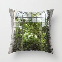 window to nature Throw Pillow