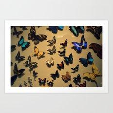 Delicate Auras Art Print