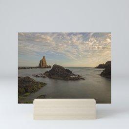 Sunset in sirens reef in the cabo de gata in long exposure Mini Art Print