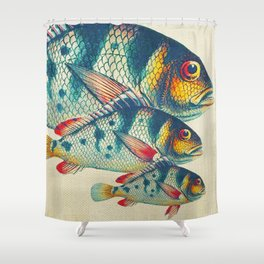 Fish Classic Designs 3 Shower Curtain