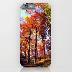 Fisheye Fall II iPhone 6s Slim Case