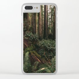 Redwood Forest Floor Clear iPhone Case