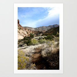 Fresh Trail Art Print
