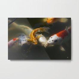 Koi Fish #3 Metal Print