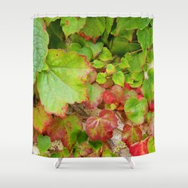 Ivy at the Getty Shower Curtain