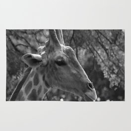 Giraffe Portrait Rug