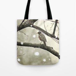 American Robin (Turdus migratorius) in Winter Tote Bag