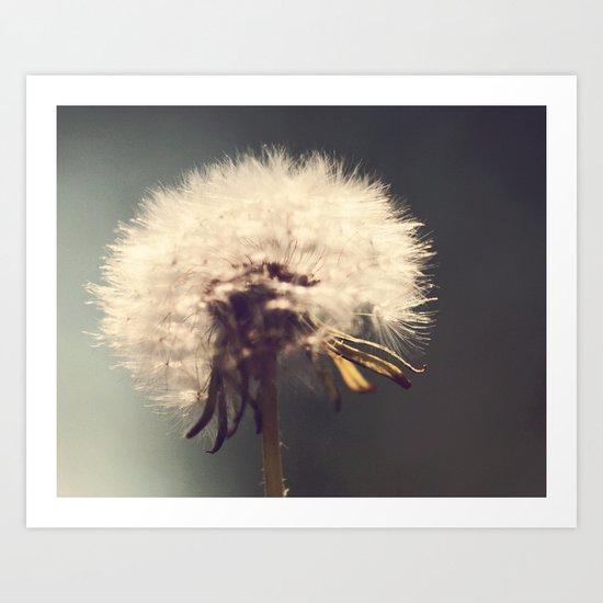 Lonely Dandelion Art Print