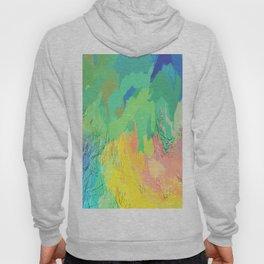 406 - Abstract Colour Design Hoody