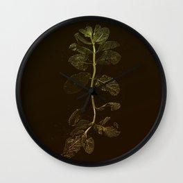 La Menthe Wall Clock