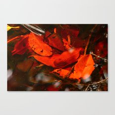 Red Coloured water Canvas Print