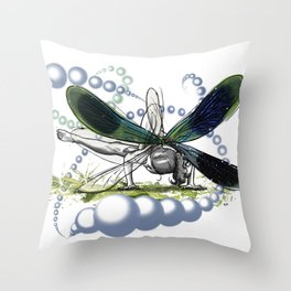 Takeoff imminent... Throw Pillow