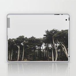 lands end Laptop & iPad Skin