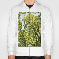 Peaceful Forest Hoody