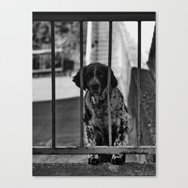 The Prisoner Canvas Print