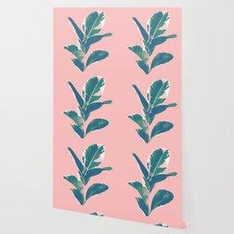 Ficus Elastica Finesse #3 #tropical #foliage #decor #art #society6 Wallpaper