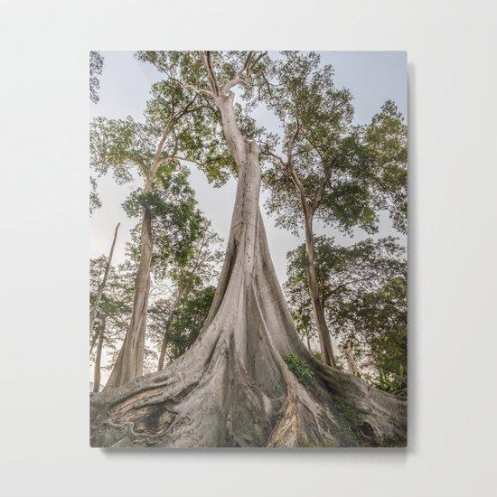 Tree of Wonder Metal Print