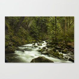 Rios de Oregon 1 Canvas Print