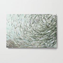 Just Swimmingly Metal Print