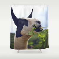 llama Shower Curtains featuring Llama by Jimmy Duarte