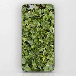 Green Leafs iPhone Skin