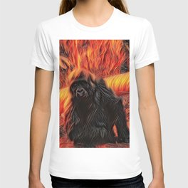 My beautiful Koko T-shirt