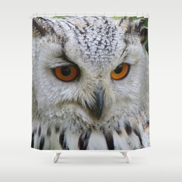 Owl | Chouette Shower Curtain