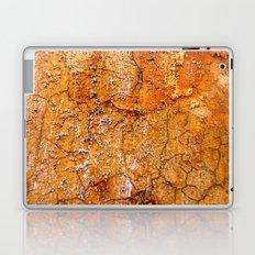 Decay 3 Laptop & iPad Skin