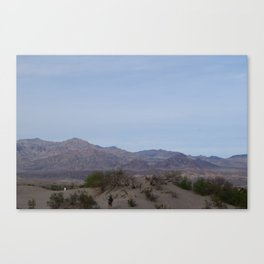 Death Valley Spring Bloom 2016 Greenery Red Rock Mountains Canvas Print