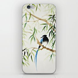 Blue Bird on The Branch iPhone Skin