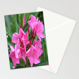 Pink Oleander Bouquet Closeup  Stationery Cards