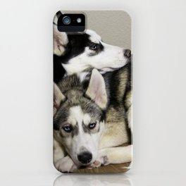Tan and White Husky, and Black and White Siberian Husky with Blue Eyes Snuggling iPhone Case