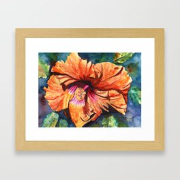 Tropical Hibiscus 9 Framed Art Print