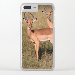 Boys Looking for Girls Clear iPhone Case