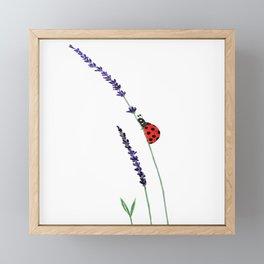 red ladybug and purple lavender Framed Mini Art Print