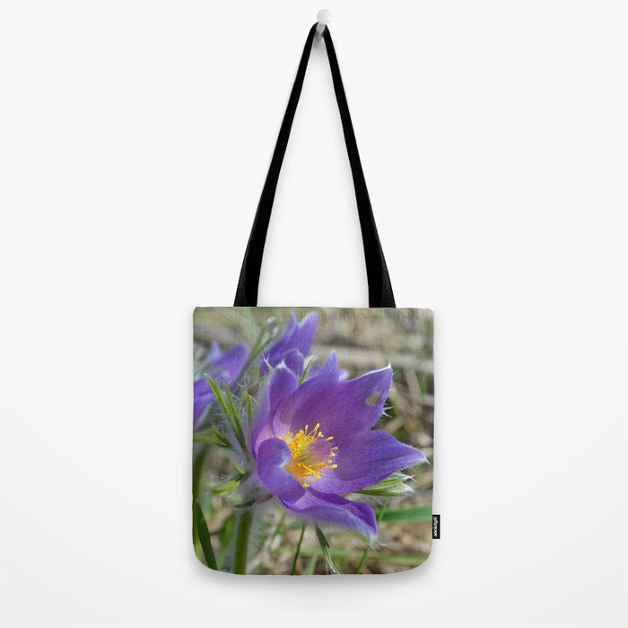 Purple Pasqueflower  Tote Bag