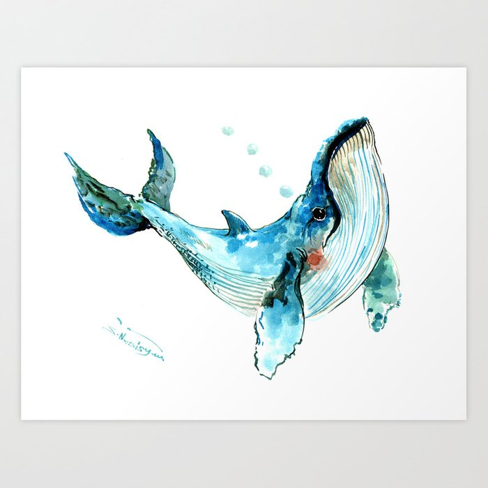 humpback whale artwork children illustration cute little whale art