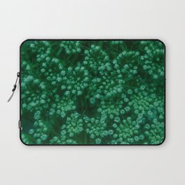 Green Queen Anne's Lace (Up Close) Laptop Sleeve
