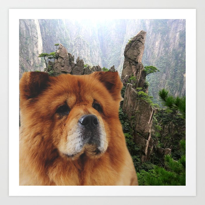 Dog Chow Chow Art Print