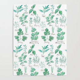 green herbs family watercolor Poster