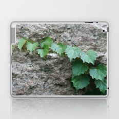 Granite Ivy Laptop & iPad Skin