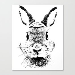 rabbit Canvas Print