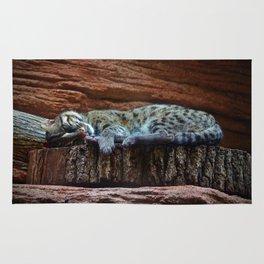 Black Footed Cat Rug