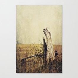 Marsh Tree Canvas Print