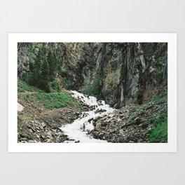 Periodic Springs (35mm Film) Art Print