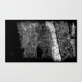 Cavernous Canvas Print