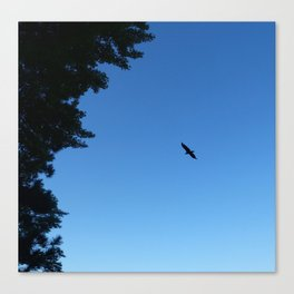 Eagle Silhouette // Nature Photography Canvas Print
