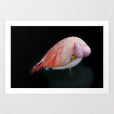 Pink3 Art Print