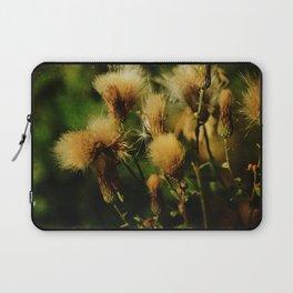 Thistle Burst Laptop Sleeve