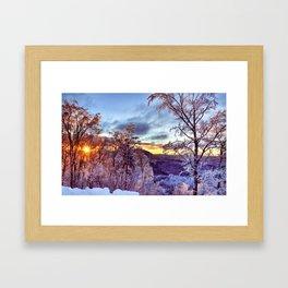 Icy Forest Awakens Framed Art Print